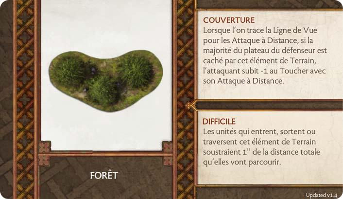 Terrain-Foret
