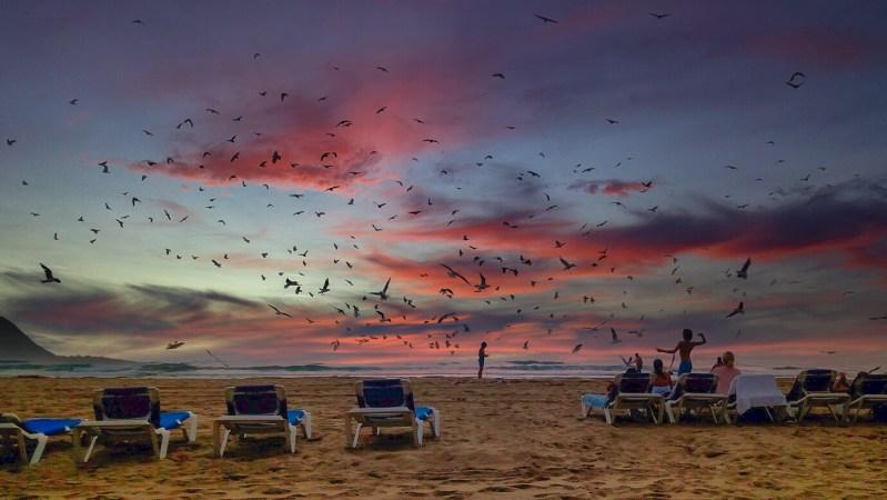 Costa Blanca, Benidorm, Strand, zonsondergang, rode lucht, vogels, overnachten B&B, hotels