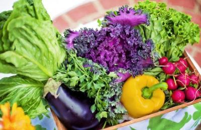 ¿Cómo desarrollar hábitos alimenticios sanos en la Nueva Realidad?