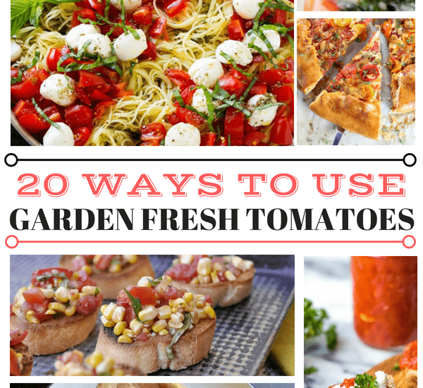 20 ways to use Garden Fresh Tomatoes