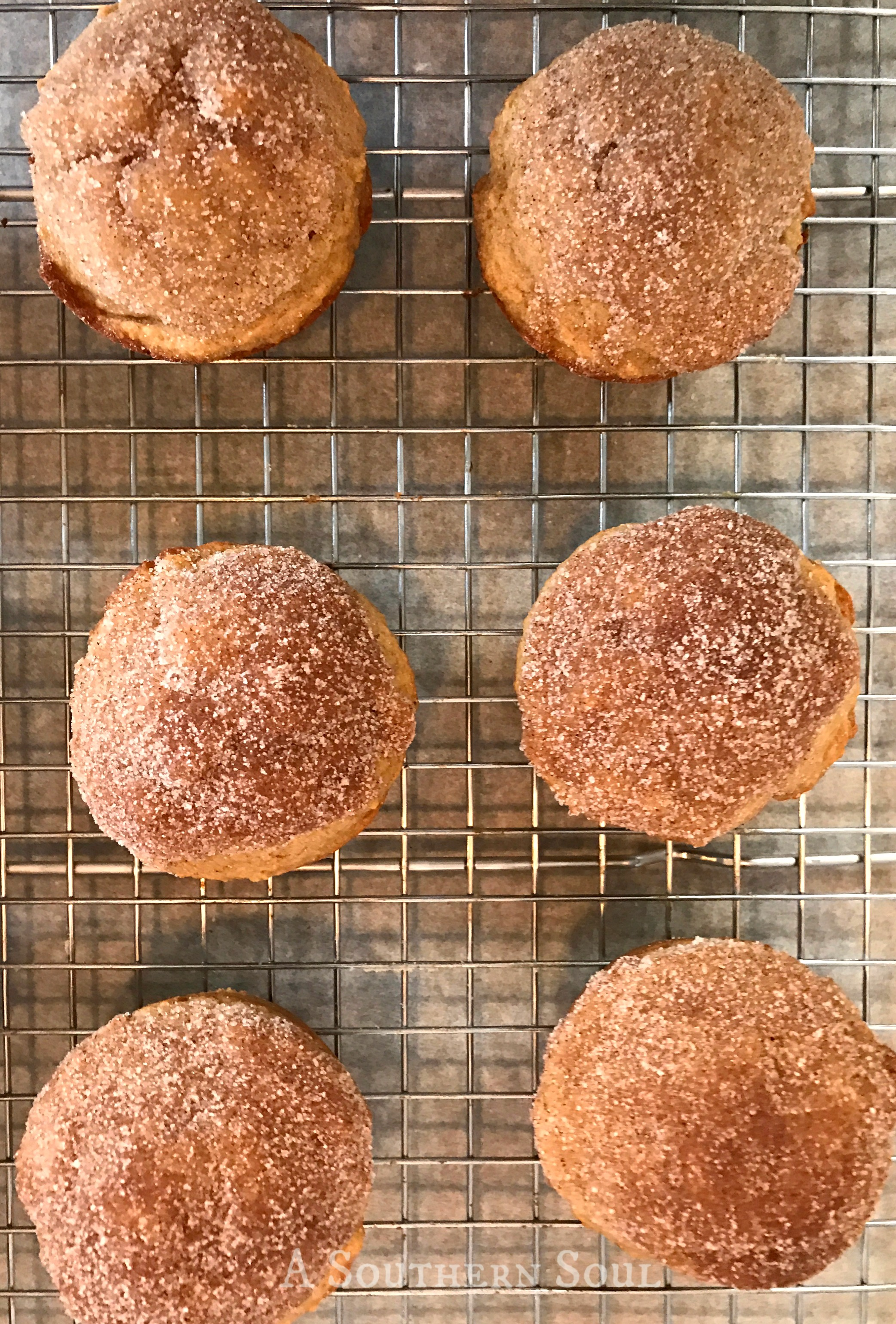 whole wheat applesauce muffins on rack