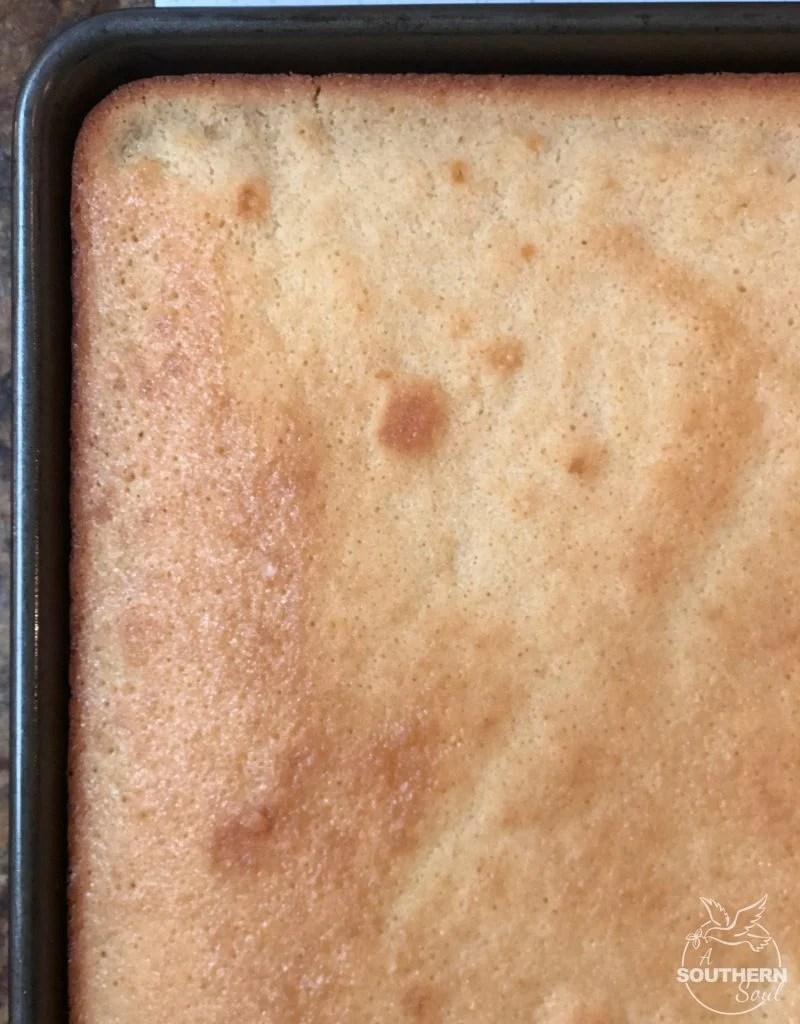 vanilla sheet cake with chocolate fudge icing