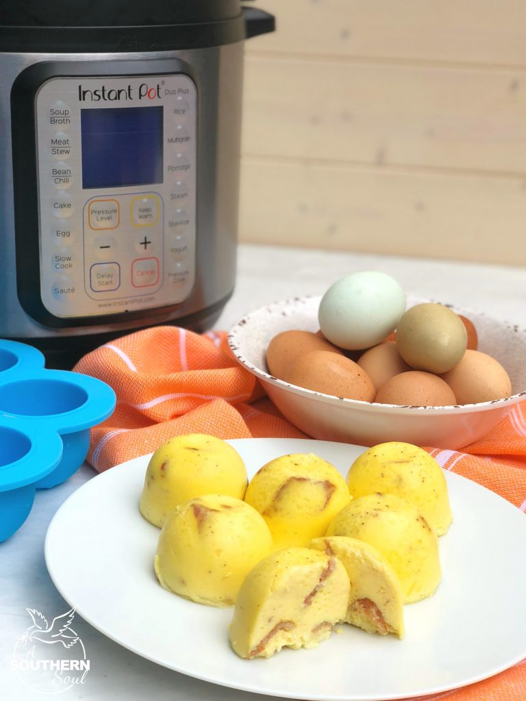Instant Pot Bacon & Cheese Egg Bites