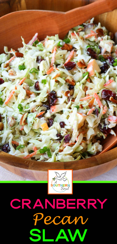 Take your coleslaw to a whole new level with sweet, tangy cranberries and crunchy pecans. Mix in an apple and some savory, green onions then toss them all in a creamy dressing for a dish that will be a favorite at any gathering!