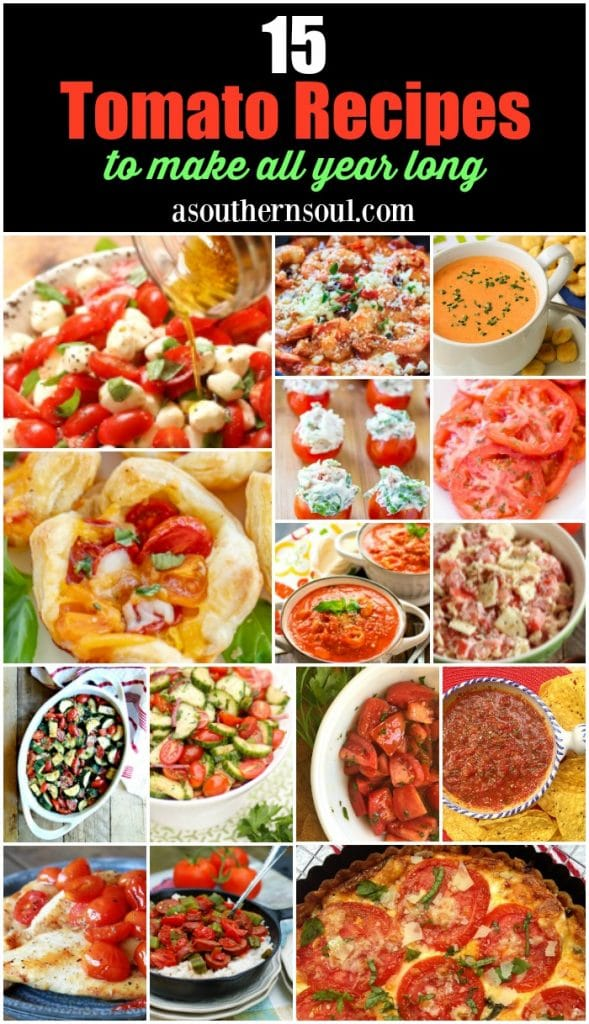 15 Tomato Recipes to serve all year long. Appetizers, snacks, salads, side dishes and soups that are full of tomatoes and easy to make.