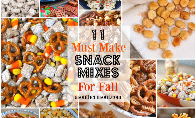 11 Must Make Snack Mixes For Fall