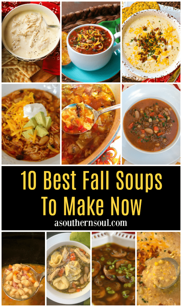 10 of the Best Fall Soup to make to feel warm and cozy all fall long. Easy to make on the stove top or the slow cooker.