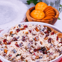 Cranberry Pecan Chicken Salad is loaded with sweet and savory flavors. This easy to make recipe has loads of tender chicken, tart cranberries, crunchy pecans and sweet apples. Serve it for lunch or a light supper any time of the year!