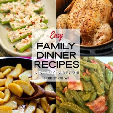 Easy Family Dinner Recipes for Midweek Menu #111.