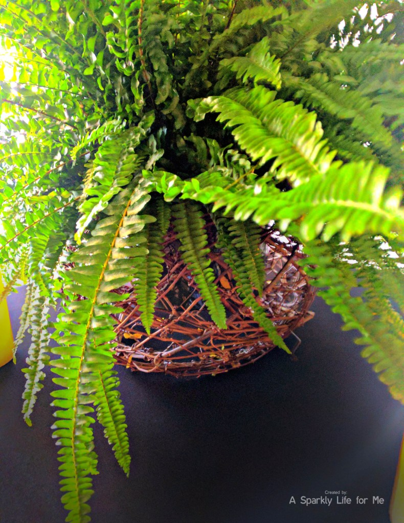 Boston fern plant table decor with grapevine base for a jungle table centerpiece