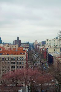 View from Monringside Park, NYC