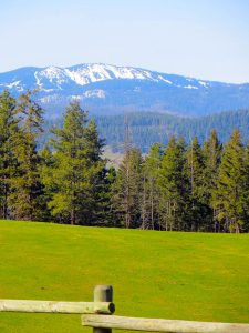 View to Silver Star Mountain from Aspengrove Country Resort