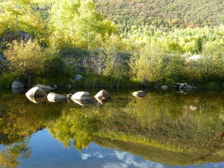 Hunter Creek in the Hunter Creek valley.