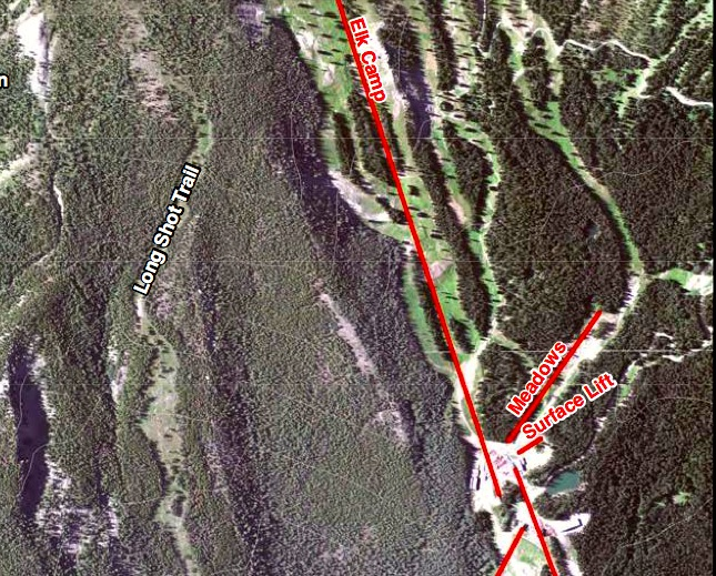 A USFS graphic of the Snowmass Ski Area from a 2013 study of Burnt Mountain shows the forested area above the Meadows lift where SkiCo is considering building an alpine coaster.
