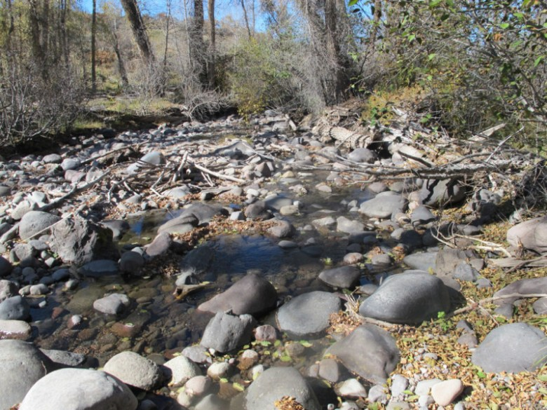 The Little Cimarron River below below the McKinley Ditch headgate in 2011. The stream below the headgate is often left dry due to irrigation diversions, but that is expected to change thanks to an innovative split-season arrangement to leave 5.8 cfs of water in the river in late season.
