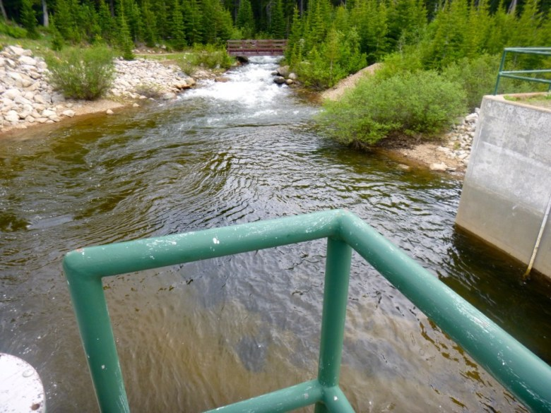 A stream in the headwaters of the Fryingpan River heading for a transmountain diversion structure. The Garfield County Commissioners have called for a summit of county commissioners from the Western Slope to discuss a conceptual framework to guide a potential new transmountain diversion.