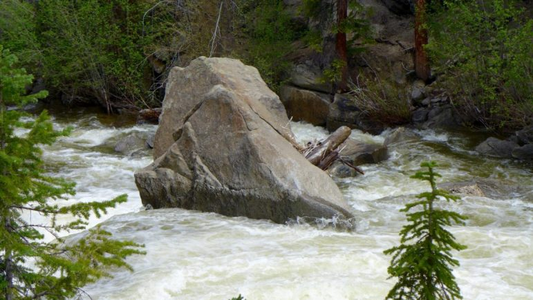 Roaring Fork River, Grottos, on Monday morning June 13, 2016, before flows from either Lost Man Creek or Lincoln Creek were added to Fork and the Twin Lakes Tunnel was diverting about 600 cfs.