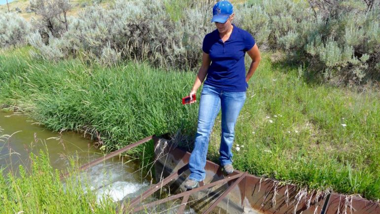 Shanna Lewis, a water commissioner in Div. 6, inspecting the Meeker Ditch's measuring flume. Lewis suggested it's easy for outsiders to critique how ranchers manage their water, but that there are a lot of factors, and experience, involved that are not always readily apparent.