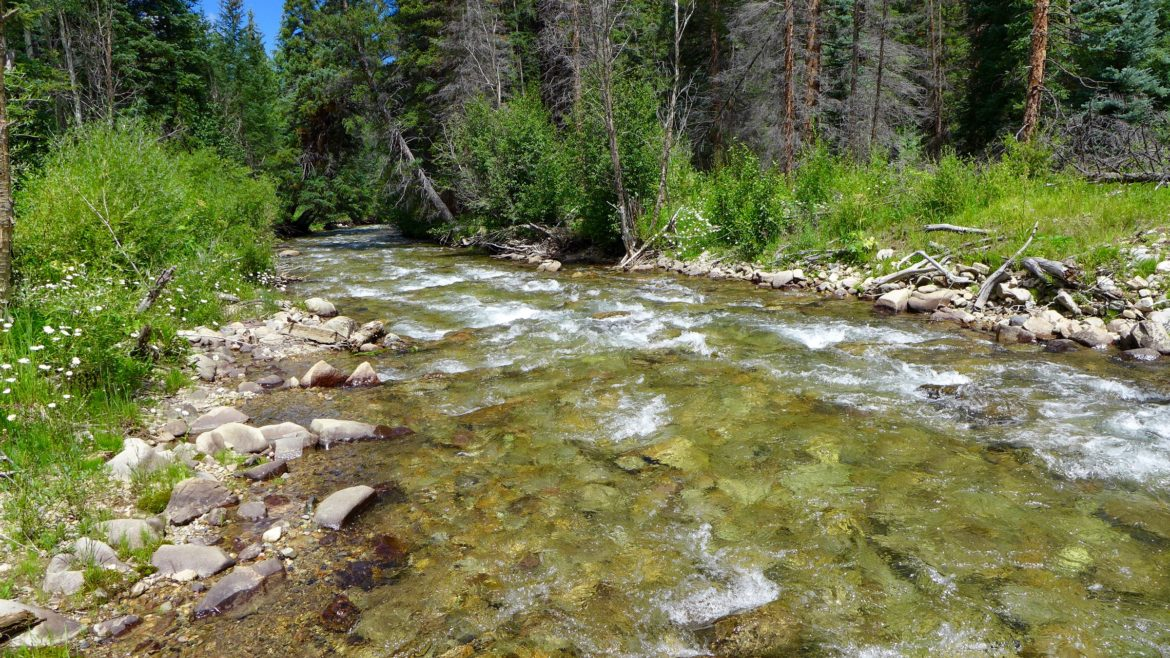 Castle Creek, not far below Ashcroft. This section of river would be covered by a potential Castle Creek Reservoir.