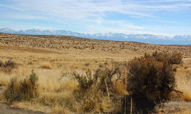 Picts-Twin-River-Ranchos-017-039-003-2.27-Acres-2-750x450