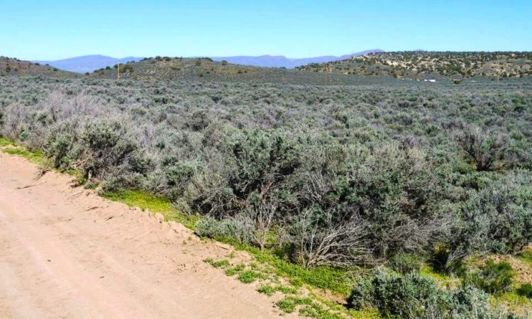 Picts-Last-Chance-Ranch-2.27-Acres-2-750x450