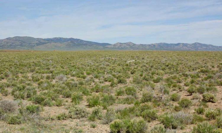 Picts-2.27-2.06-2.27-2.49-Acres-Sunland-Acres-Unit-4-4-750x450