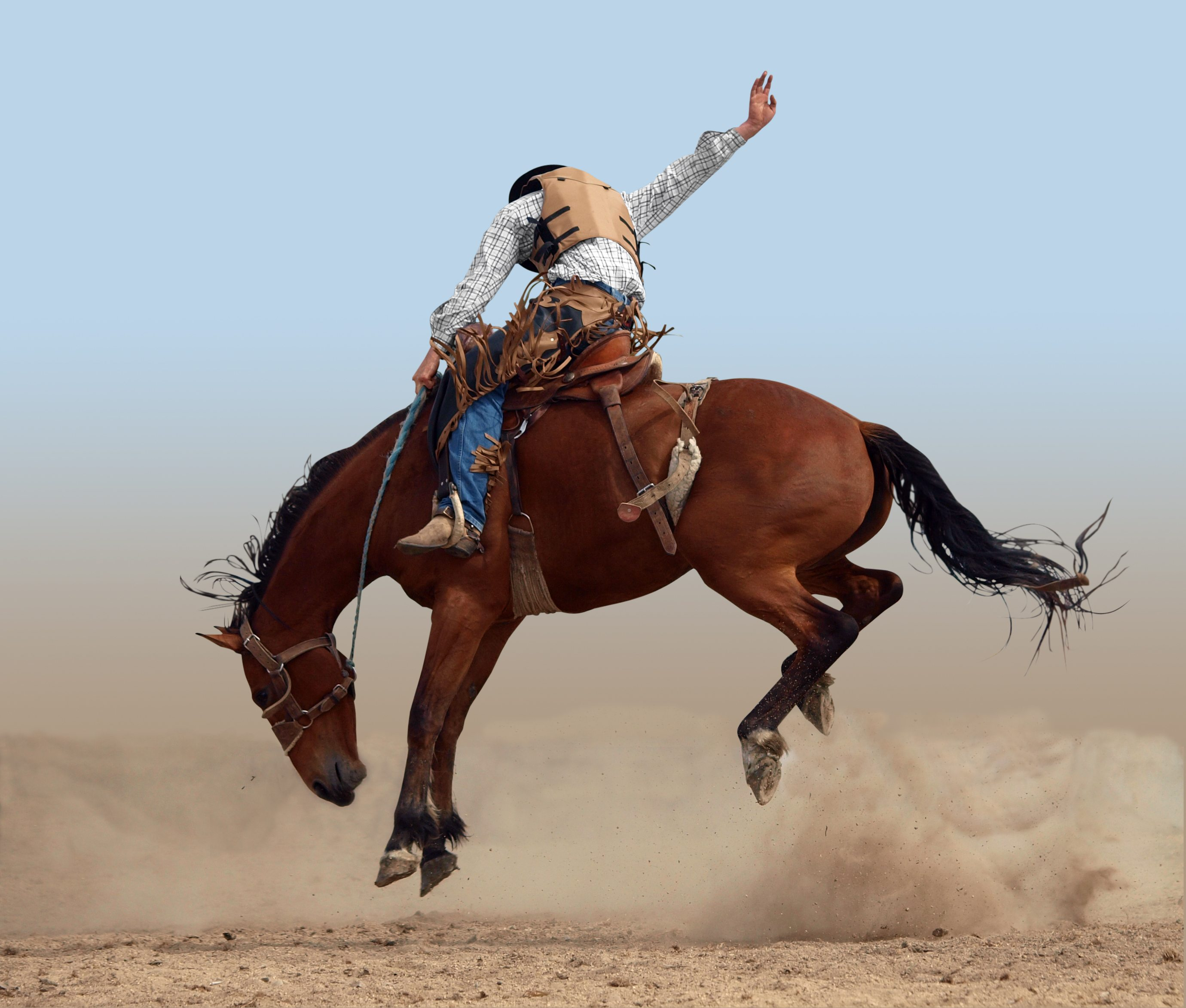 carbondale wild west rodeo