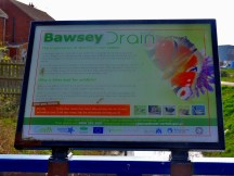 Bawsey Drain's information board about wildlife - the only species on it I have never seen there is a coot.