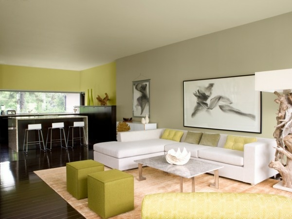 modern living room decoration in green