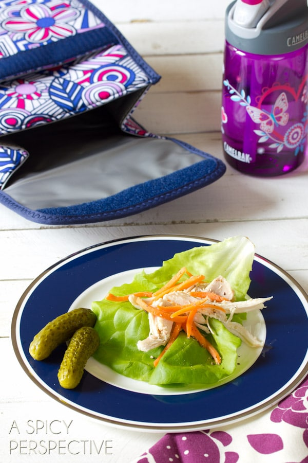 Back-to-School Lunch Ideas   ASpicyPerspective.com #backtoschool #lunch #schoollunch #lunchbox