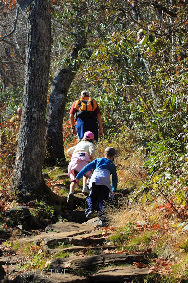 Hiking -Things to Do in Asheville NC | ASpicyPerspective.com #travel #asheville #visitasheville #fall