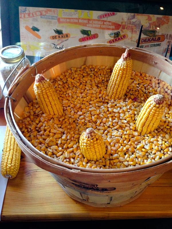 Iowa CornQuest 2013