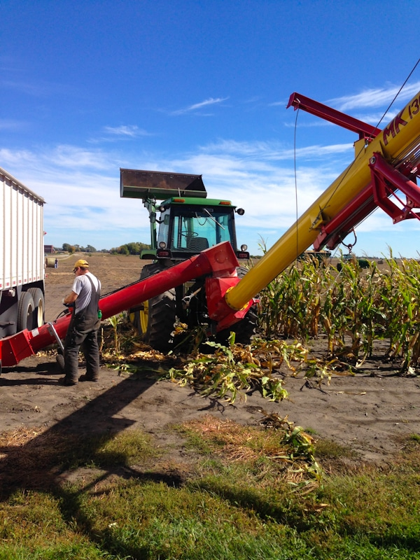 Iowa Corn Farming