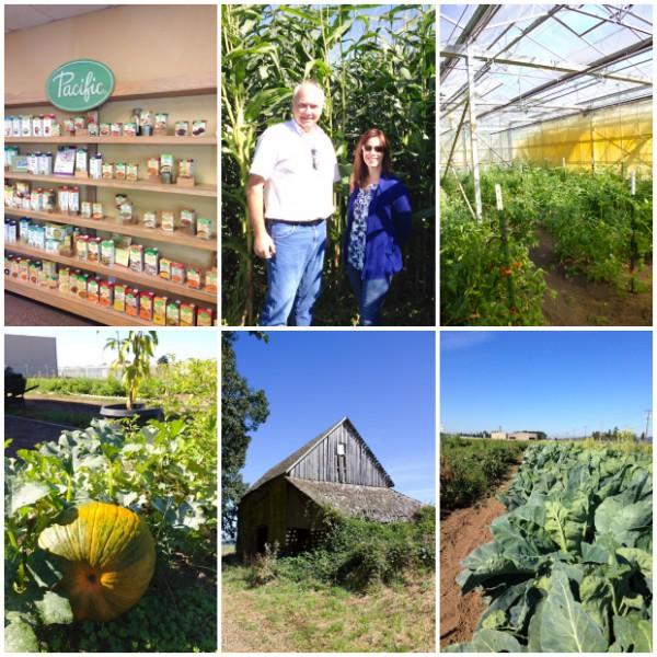 Pacific Foods Farm Tour