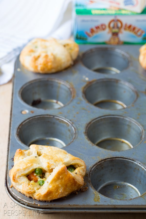Easily The BEST Chicken Pot Pie Recipe Ever! #chicken #potpie #recipe #giveameal