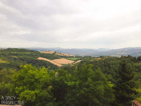 Seeing Bologna Italy - Travel Tips and Photos on ASpicyPerspective.com #travel #italy