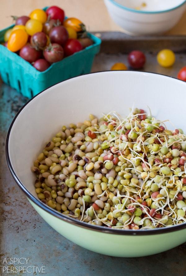 Beans in a Bowl #ASpicyPerspective #Bean #Salad #BeanSalad #BeanSaladRecipe #Healthy #Vegan #GlutenFree #Vegetarian #Tomatoes #BlackEyedPeas #FieldPeas #Lentils