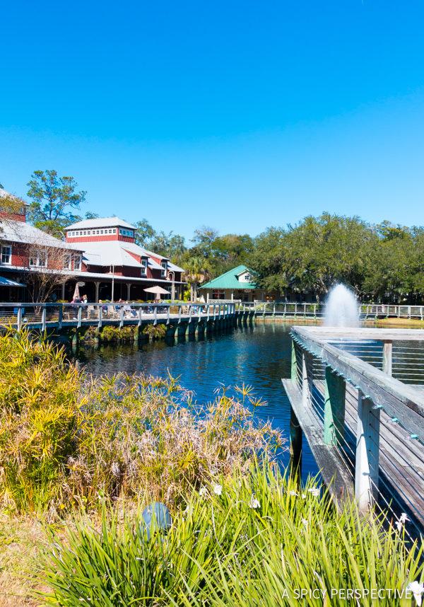 Shopping - Visit Amelia Island, Florida   ASpicyPerspective.com