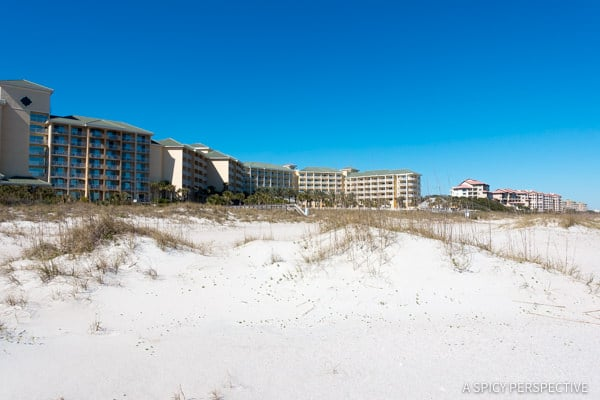 Beach - Visit Amelia Island, Florida   ASpicyPerspective.com