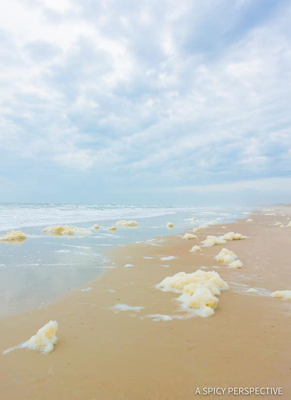 Sea foam - Amelia Island, Florida Travel Planning Tips   ASpicyPerspective.com