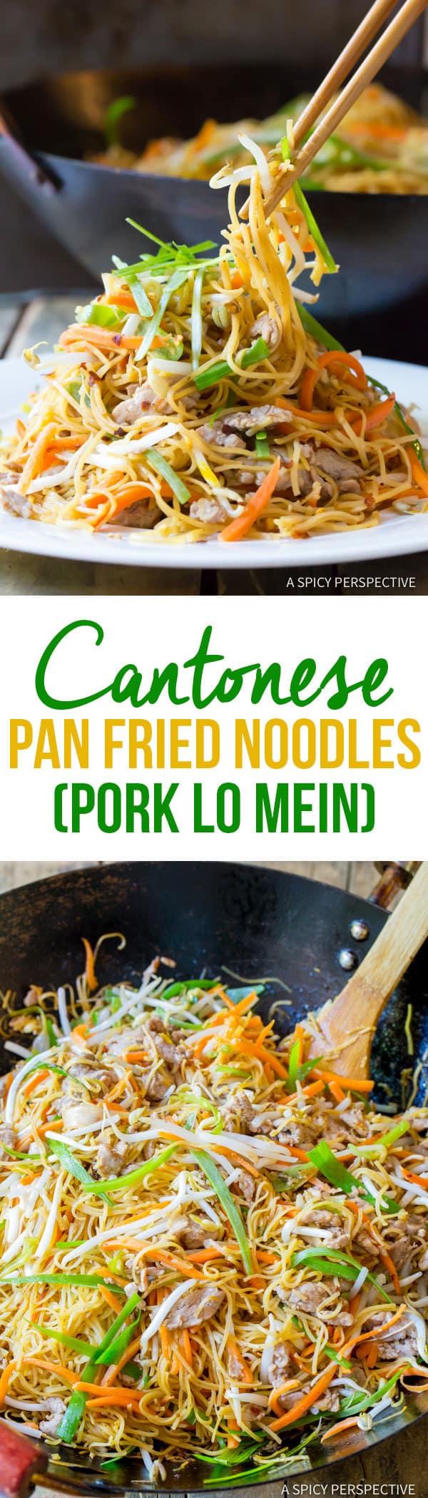 Steaming Cantonese Pan Fried Noodles (Pork Lo Mein) | ASpicyPerspective.com