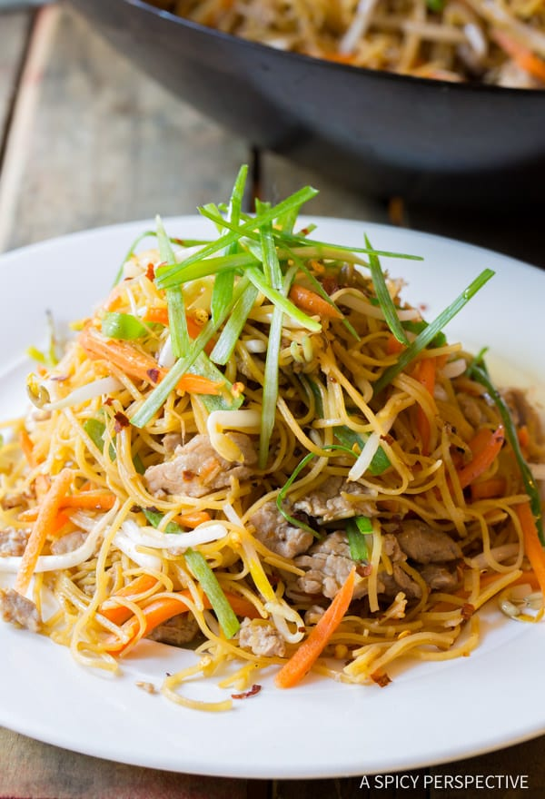 Must-Make Cantonese Pan Fried Noodles (Pork Lo Mein) | ASpicyPerspective.com