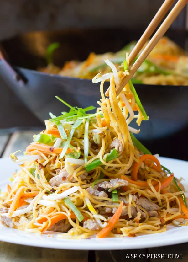 Cantonese Pan Fried Noodles (Pork Lo Mein) | ASpicyPerspective.com