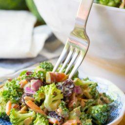 The Best Broccoli Salad Recipe Ever   ASpicyPerspective.com