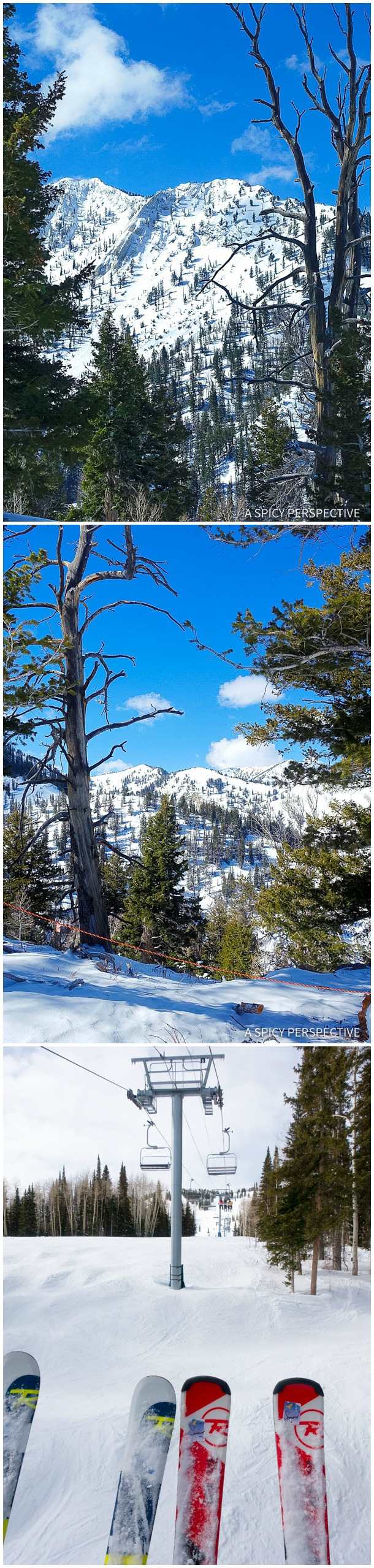 Why You Should Ski Solitude Mountain Resort