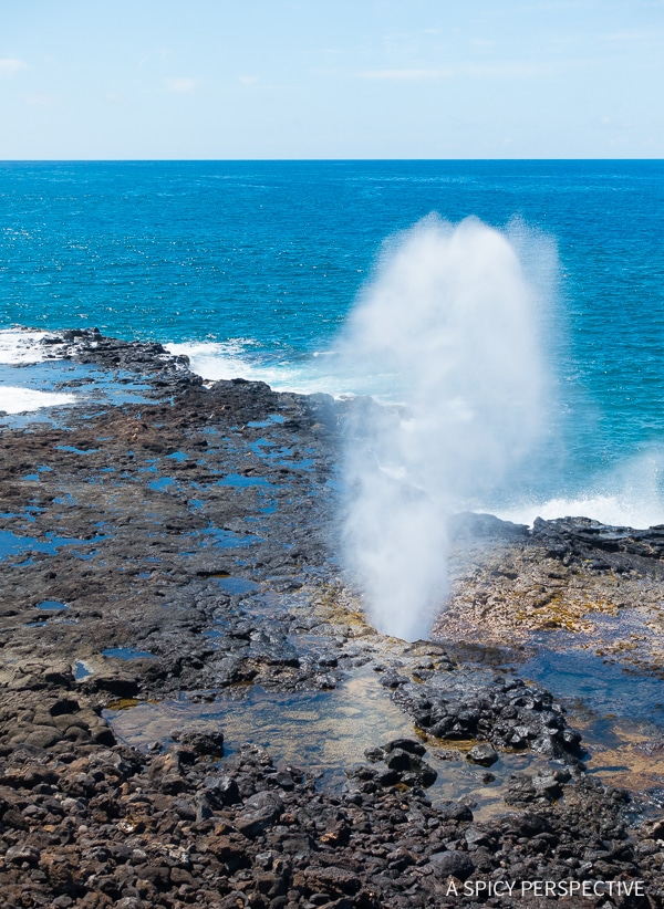 Hawaii Bucket List: Top Things To Do In Kauai - A Spicy
