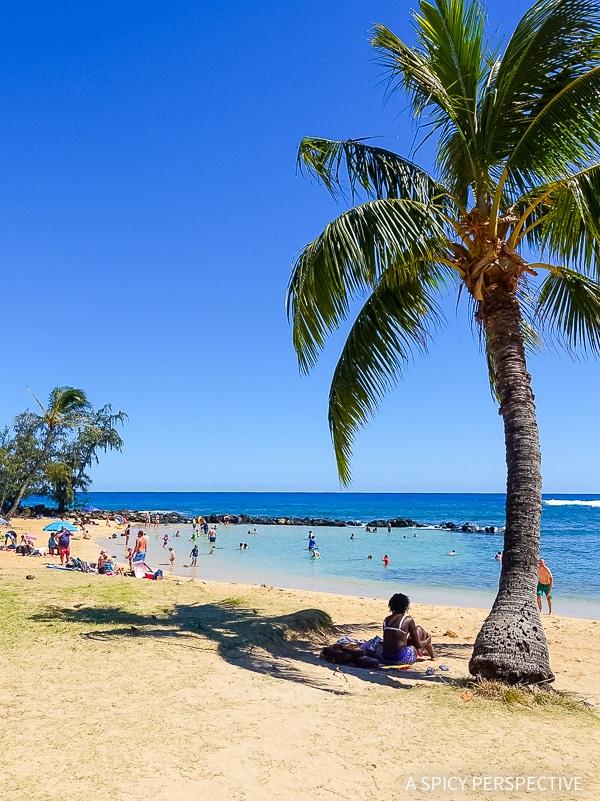 Hawaii Bucket List: Top Things To Do In Kauai - A Spicy
