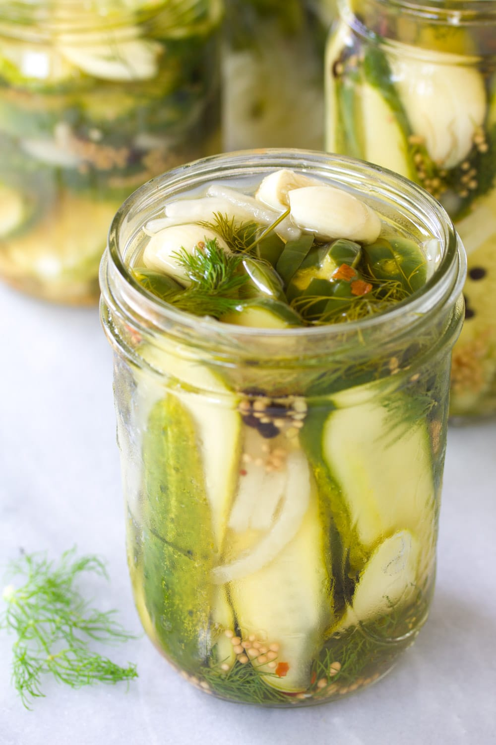 Best Homemade Refrigerator Pickles - A Spicy Perspective
