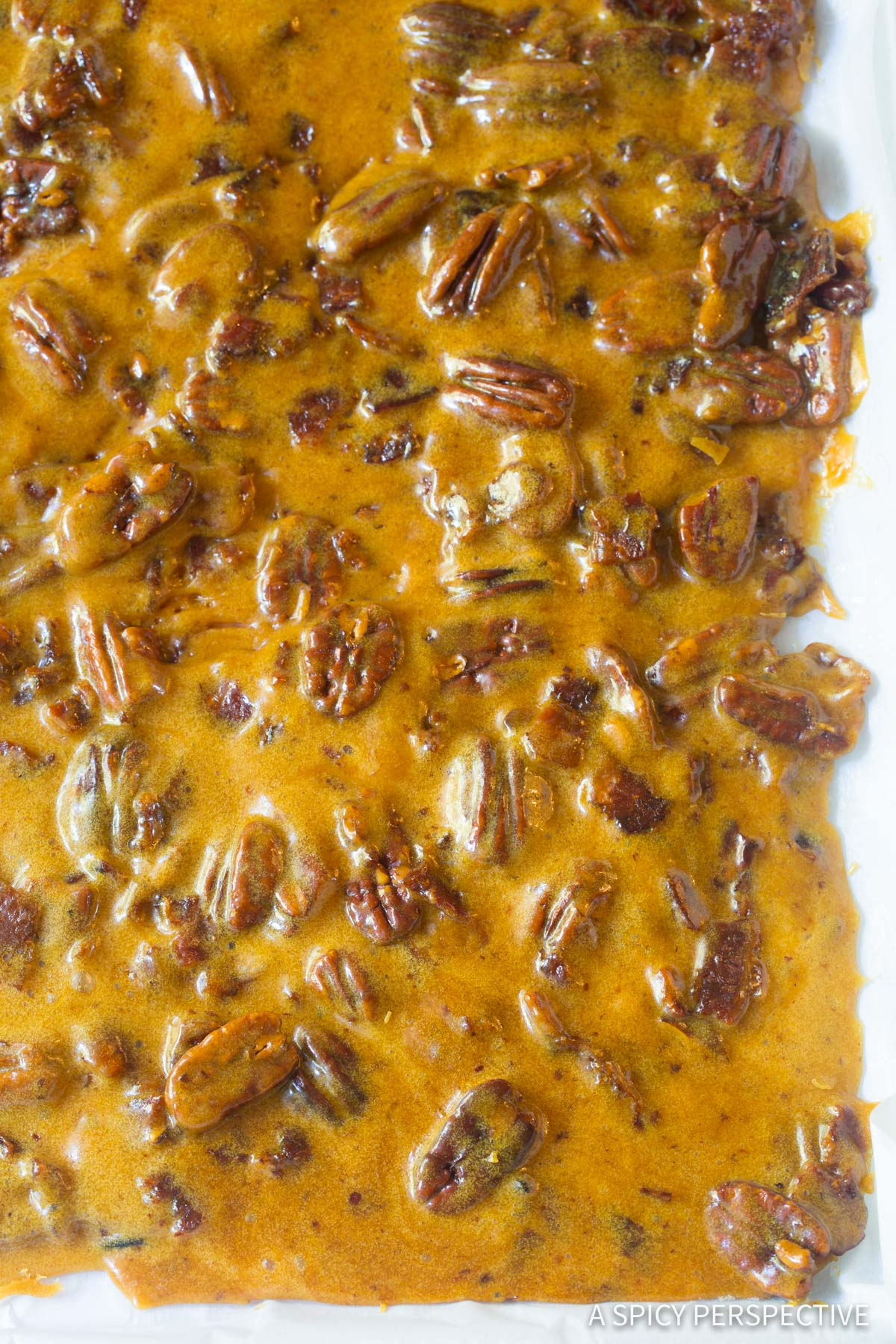 Holiday Bacon Pecan Brittle Recipe #ASpicyPerspective