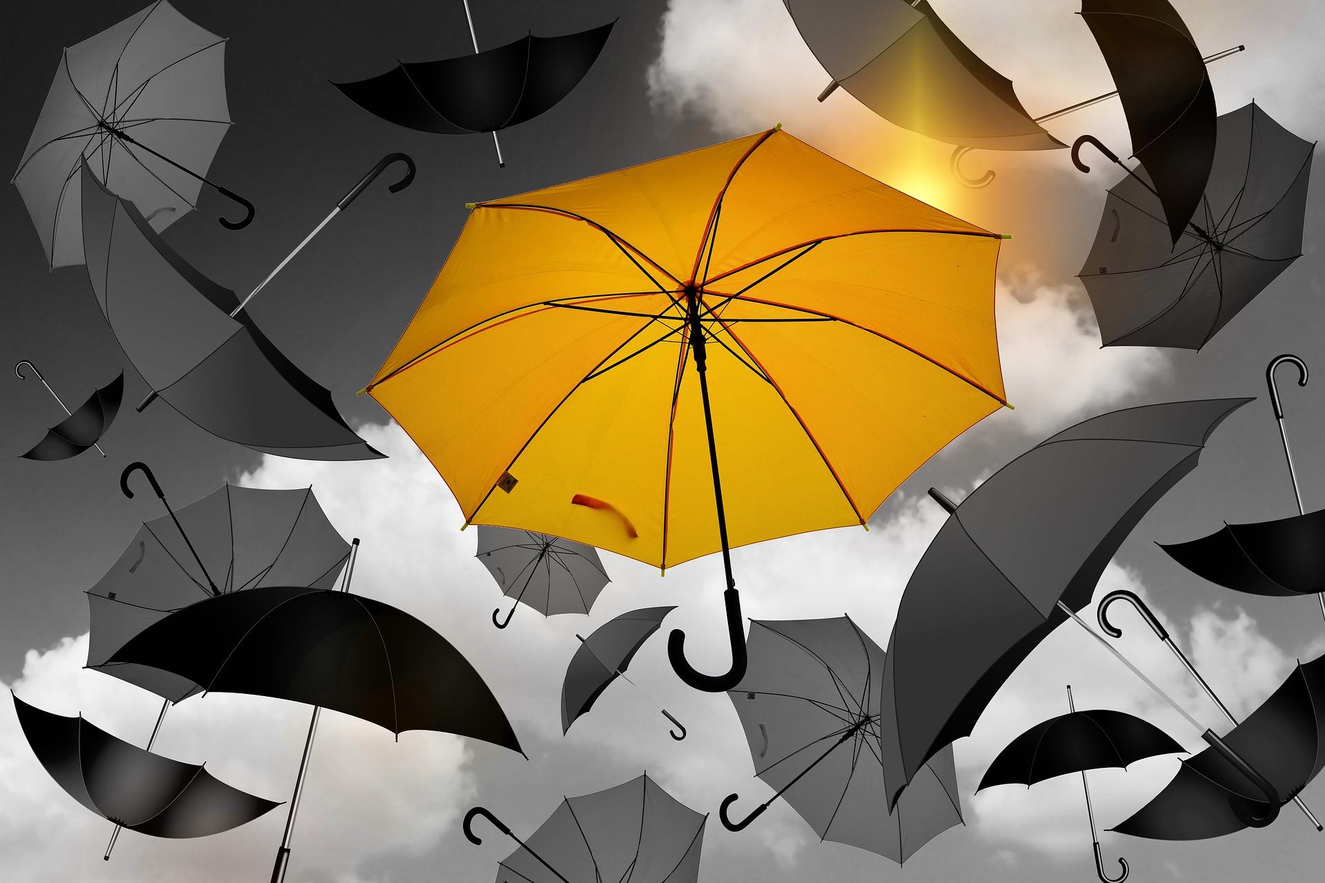 A yellow umbrella among black umbrellas